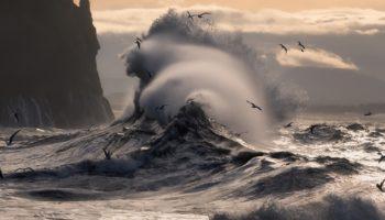 Стихотворение для тренировки дикции Валерия Брюсова Буря с берега